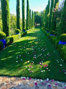 ideas bodas originales
