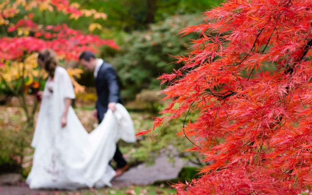 Bodas de otoño: qué decoración elijo